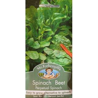UK/FO-SPINACH BEET Perpetual Spinach