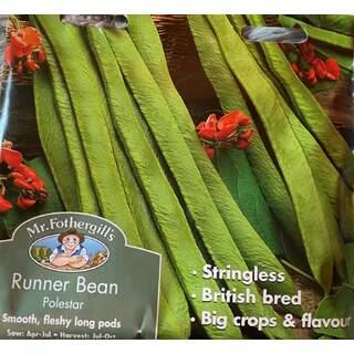 Runner Bean Polestar