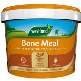 Bone Meal 10Kg
