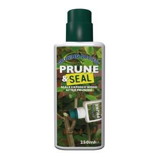 GS Prune & Seal 250ml
