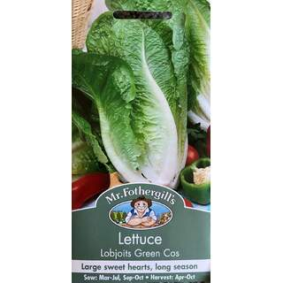 UK/FO-LETTUCE Lobjoits Green Cos