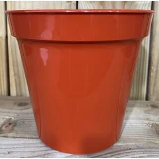 """20.3cm (8"""") Flower Pots"""