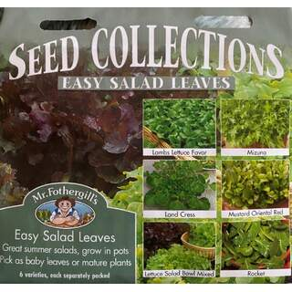 UK/FO-EASY SALAD LEAVES