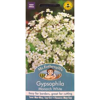 UK/FO-GYPSOPHILA Monarch White