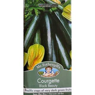 UK/FO-COURGETTE Black Beauty