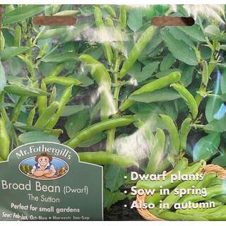 UK/FO-BROAD BEAN The Sutton